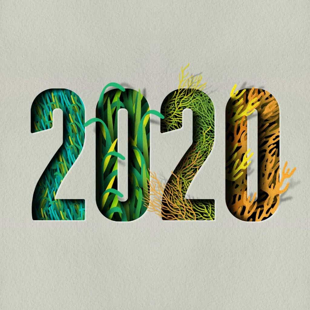 YAH 2020 su brand logo
